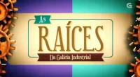 Raices Sector Textil